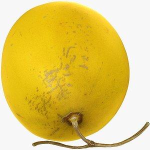 GoldenCantaloupe model