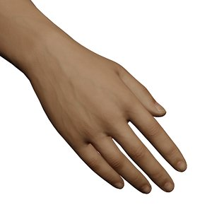 3D model Male Right Hand Rigged