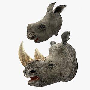 3D model rhinos heads fur