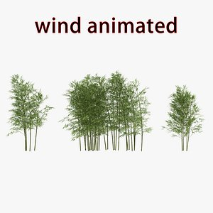 3D bamboo wind