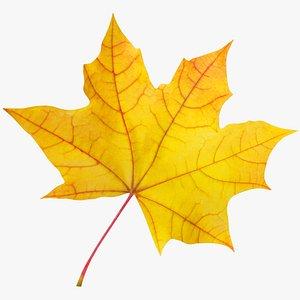 3D Maple Leaf V2