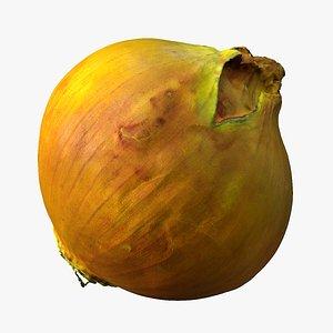 3D Onion 3d Scan