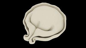 3D model Pelmen  Dumpling