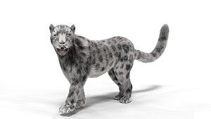 Realistic Fur Leopard Rigged 3D model