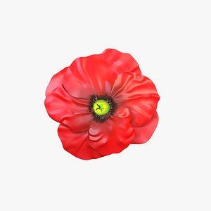 poppy plants flowers 3D model