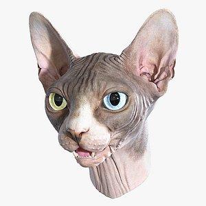 Sphynx Head model