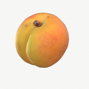 04 apricot fruit modeled 3D