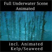 Underwater Seaweed Kelp Scene Animated