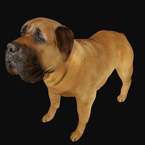 Fully rigged low poly Mastiff Dog model