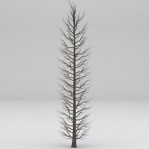 3D cypress tree winter
