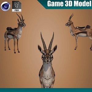Gazelle Springbok 3D model