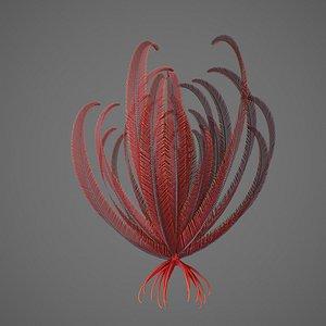 Crinoid 3D