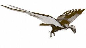 3D Condor