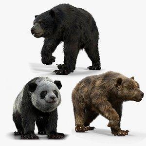 Bear Collection Houdini model