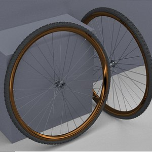 3D Bicycle Rim With Tire Off-road 3D model