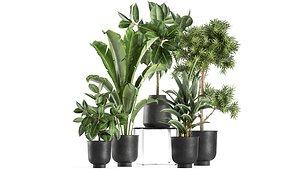 3D ornamental plants interior pots