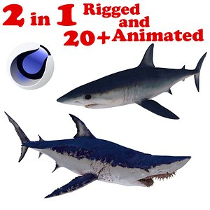 Mako Shark 2 in 1 Rigged and Animated 3D model