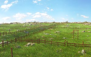 Nature Meadow Environment 3D model