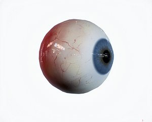3D 16 Colors of Realistic Eye - Demo Free model