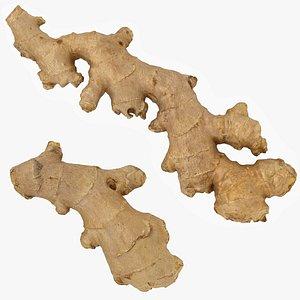 3D Ginger Set 01 model