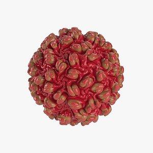 hepatitis b 3D