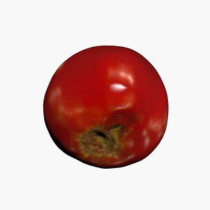 3D model Tomato 3D Scan High Quality