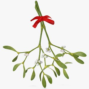 3D Mistletoe with Red Bow 2