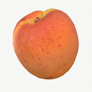 3D model 07 apricot fruit modeled
