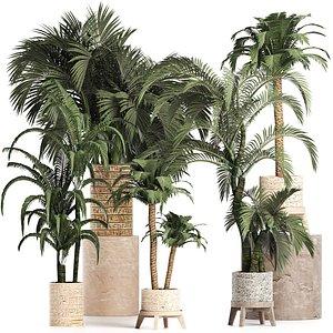 palm tree plant pot 3D