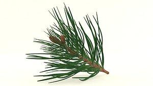 3D model Cedar pine branch