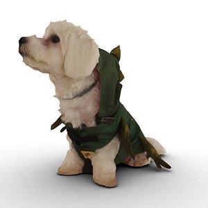 3D dog sit green