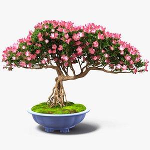 Miniature Bonsai Tree with Flowers in Pot Fur 3D model