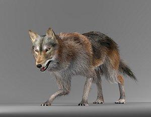 wolf fur 3D
