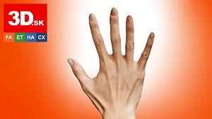 3D Retopologized Hand Scan Ishikawa Sayoko 3D model