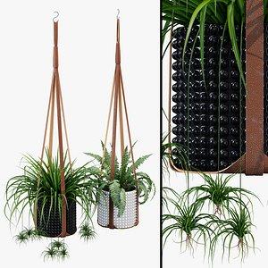 3D corium plant hangers model