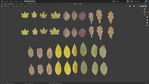 3D Fall Autumn Leaves Pack