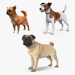 3D dogs 2