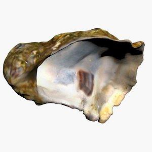3D Half Oyster 3D Scan High Quality