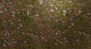 Woodland Terrain Texture