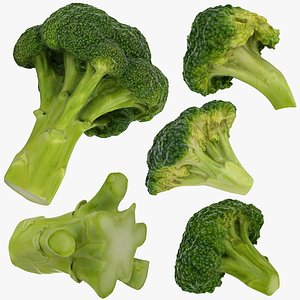 vegetable broccoli 3D model
