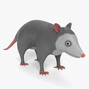 3D cartoon opossum