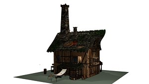 3D model Horrible house in village