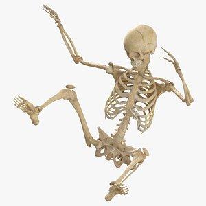 real human female skeleton model