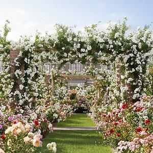 3D Bundle 08 – Rose garden model
