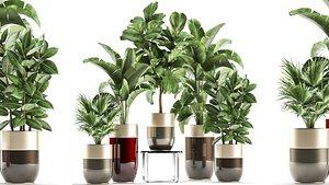 plants interior 3D model