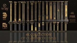 3D Collection of classical columns model