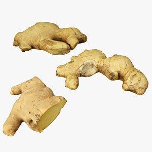 ginger model