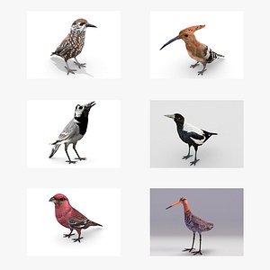 3D European birds bundle model