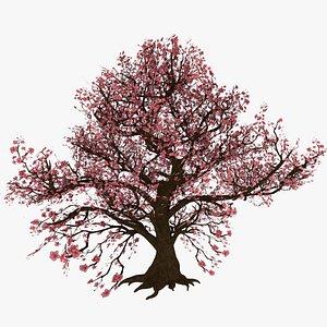 PeachBlossom 3D model