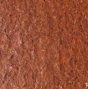 Brown Painted Wood Texture